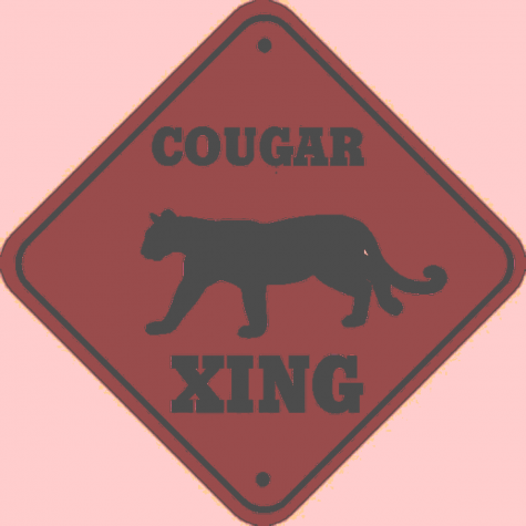 Cougar Mural May Bare Its Teeth