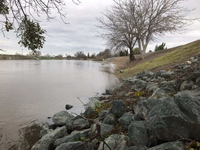 Water+levels+have+been+rising+around+the+Weston+Ranch+area.