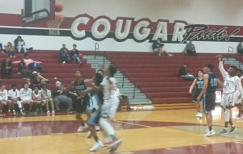 Cougars Basketball Back To Winning Ways