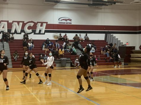 GIRLS VOLLEYBALL:  Cougars Dont Lack From Effort